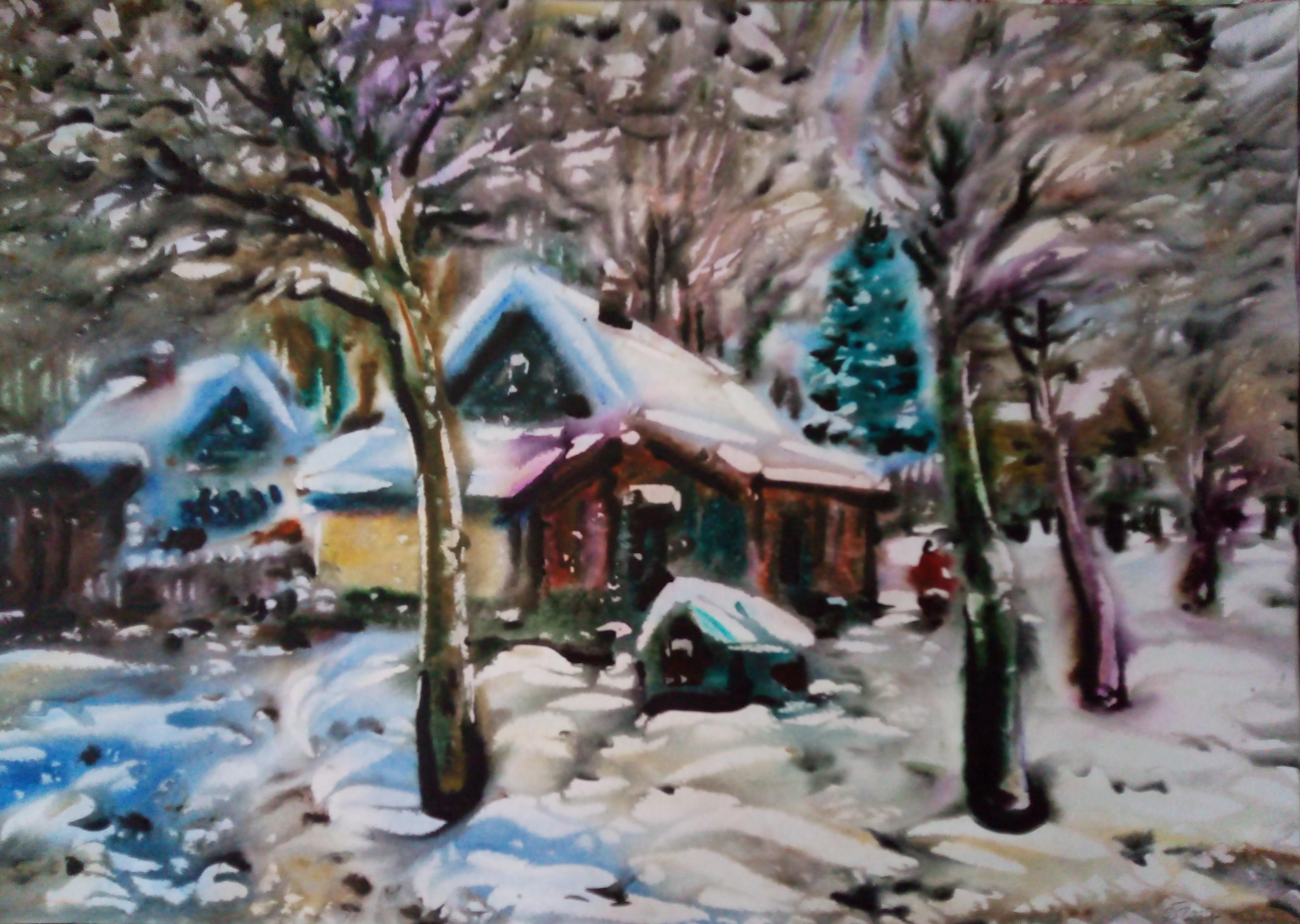 Зимой в Борониках